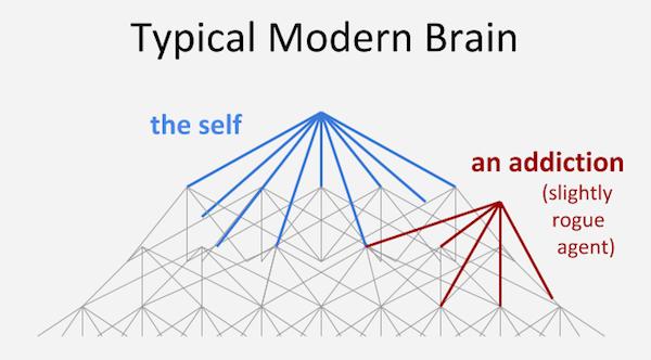 normal_brain